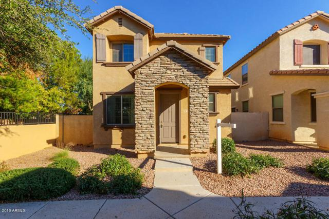 106 E Catclaw Street, Gilbert, AZ 85296 (MLS #5857350) :: Occasio Realty