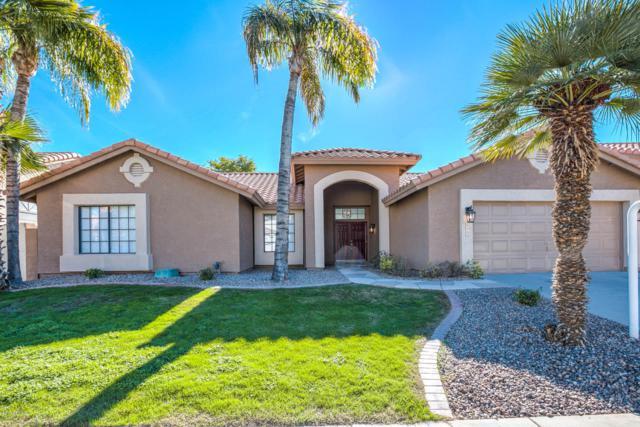 1225 W Iris Drive, Gilbert, AZ 85233 (MLS #5857354) :: Occasio Realty