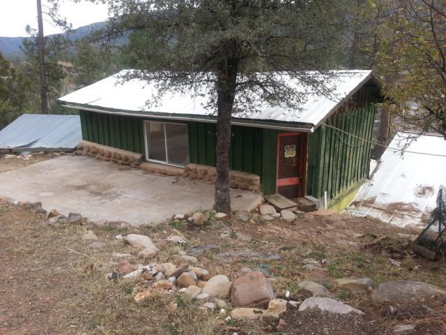 3457 Ridge Trail, Pine, AZ 85544 (MLS #5857388) :: Keller Williams Legacy One Realty