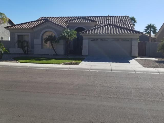 1451 W Hawken Way, Chandler, AZ 85286 (MLS #5857409) :: The C4 Group