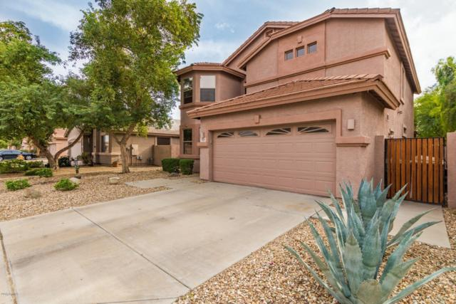 7163 W Kings Avenue, Peoria, AZ 85382 (MLS #5857449) :: Kortright Group - West USA Realty