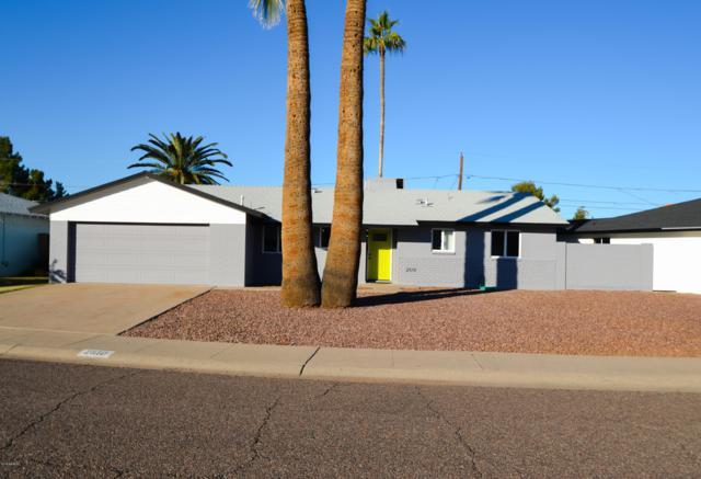 2510 W Aster Drive, Phoenix, AZ 85029 (MLS #5857452) :: Conway Real Estate