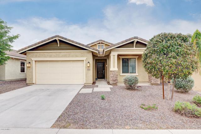 3379 E Ravenswood Drive, Gilbert, AZ 85298 (MLS #5857460) :: The C4 Group