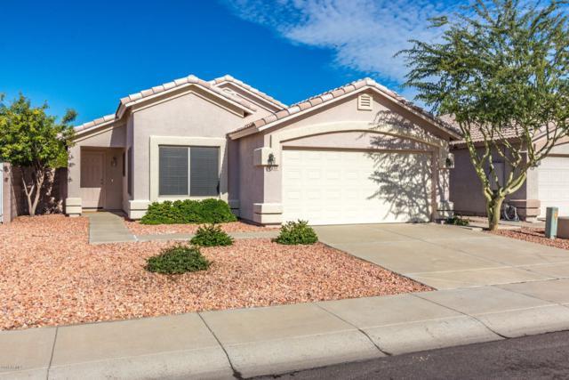 3314 W Tina Lane, Phoenix, AZ 85027 (MLS #5857471) :: Yost Realty Group at RE/MAX Casa Grande