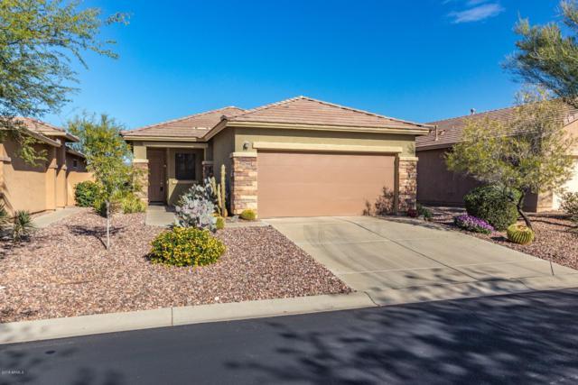 1794 W Morse Drive, Anthem, AZ 85086 (MLS #5857472) :: Desert Home Premier