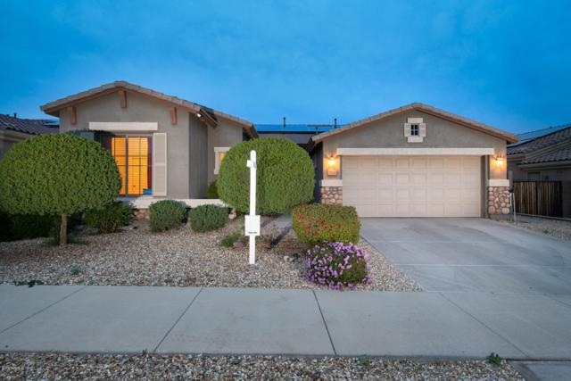 17632 W Aster Drive, Surprise, AZ 85388 (MLS #5857513) :: Kortright Group - West USA Realty