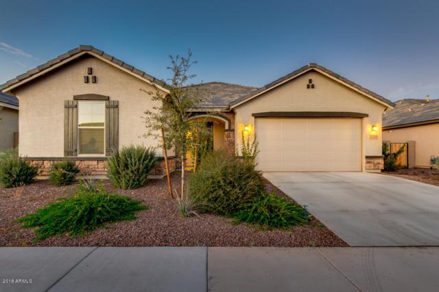 21426 W Berkeley Road, Buckeye, AZ 85396 (MLS #5857521) :: Kortright Group - West USA Realty