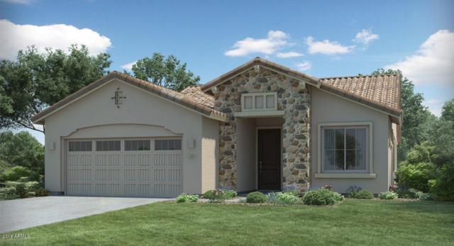 24074 N 165TH Lane, Surprise, AZ 85387 (MLS #5857522) :: Kortright Group - West USA Realty