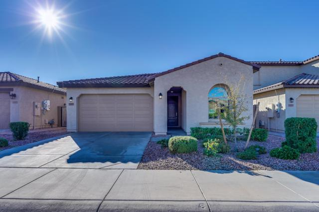 12219 W Briles Road, Peoria, AZ 85383 (MLS #5857545) :: Kortright Group - West USA Realty