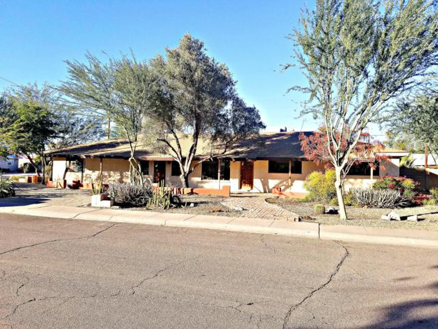 1312 W 7TH Place, Tempe, AZ 85281 (MLS #5857622) :: Kelly Cook Real Estate Group