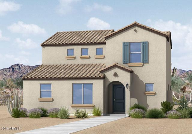8246 W Illini Street, Phoenix, AZ 85043 (MLS #5857640) :: Team Wilson Real Estate