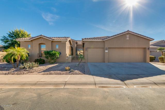 42521 W Mallard Lane, Maricopa, AZ 85138 (MLS #5857645) :: Yost Realty Group at RE/MAX Casa Grande