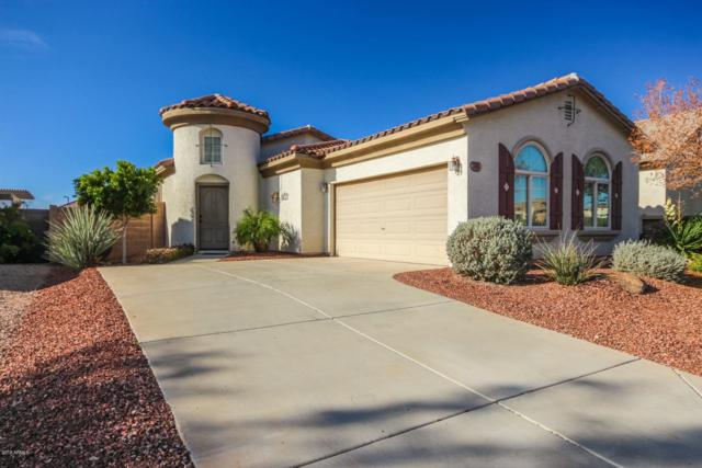 3198 N 302ND Court, Buckeye, AZ 85396 (MLS #5857649) :: Gilbert Arizona Realty