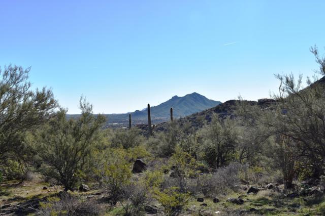 418XX N Cahava Ranch Road, Cave Creek, AZ 85331 (MLS #5857659) :: Lifestyle Partners Team