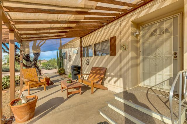 717 N Starr Road, Apache Junction, AZ 85119 (MLS #5857661) :: Yost Realty Group at RE/MAX Casa Grande