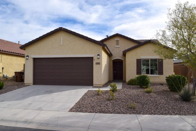 3365 N San Marin Drive, Florence, AZ 85132 (MLS #5857689) :: Yost Realty Group at RE/MAX Casa Grande