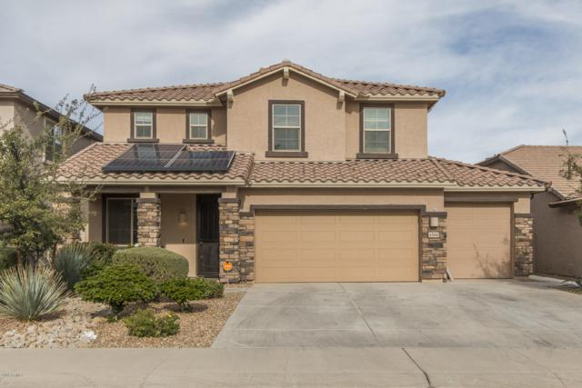 4506 W Maggie Drive, Queen Creek, AZ 85142 (MLS #5857693) :: The C4 Group