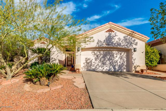 6333 E Viewmont Drive #66, Mesa, AZ 85215 (MLS #5857711) :: The C4 Group