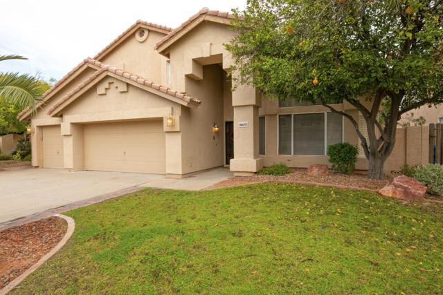 16653 S 38TH Street, Phoenix, AZ 85048 (MLS #5857717) :: CANAM Realty Group