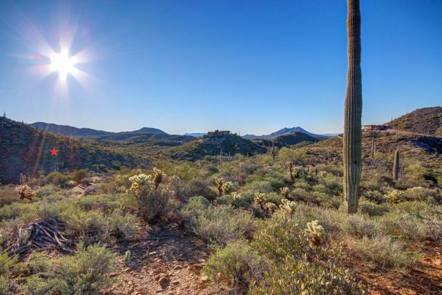 44211 N Cottonwood Canyon Road, Cave Creek, AZ 85331 (MLS #5857720) :: Lifestyle Partners Team