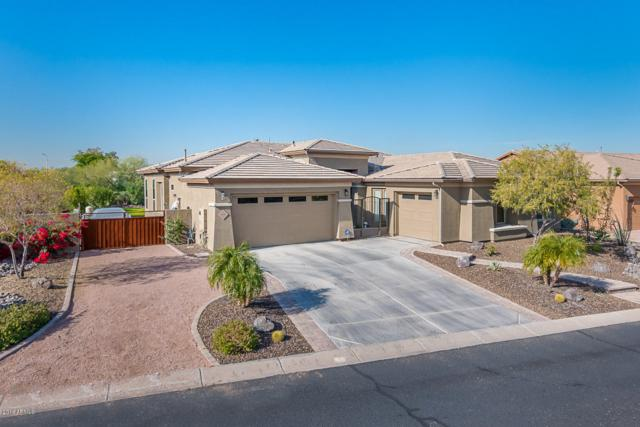 8510 S 28th Place, Phoenix, AZ 85042 (MLS #5857729) :: The Everest Team at My Home Group