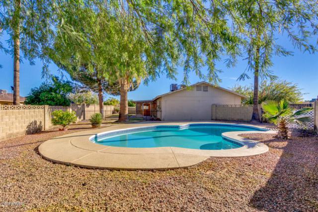 2116 W Sequoia Drive, Phoenix, AZ 85027 (MLS #5857731) :: Yost Realty Group at RE/MAX Casa Grande