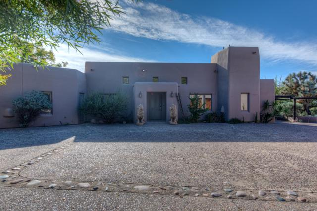 6320 E Old Paint Trail, Cave Creek, AZ 85331 (MLS #5857745) :: The Daniel Montez Real Estate Group