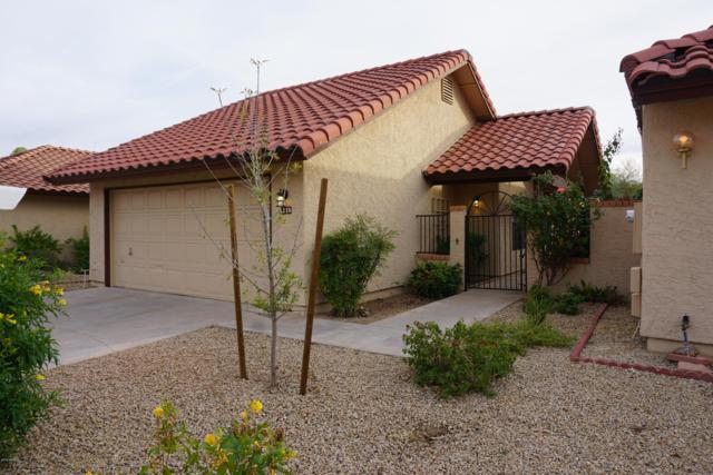 5215 E Half Moon Drive, Phoenix, AZ 85044 (MLS #5857788) :: The Daniel Montez Real Estate Group