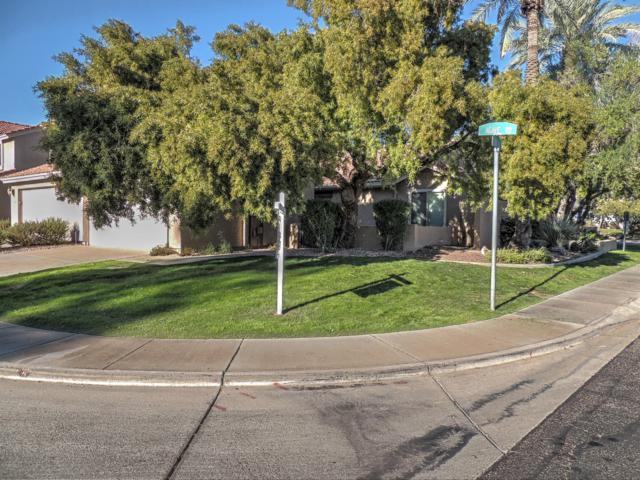 4258 E Agave Road, Phoenix, AZ 85044 (MLS #5857800) :: CANAM Realty Group