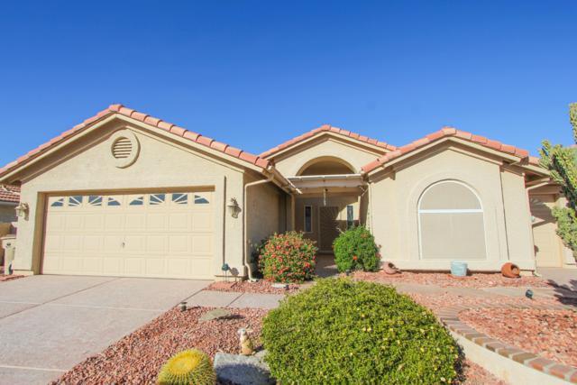 11132 E Sunnydale Court, Sun Lakes, AZ 85248 (MLS #5857836) :: Gilbert Arizona Realty
