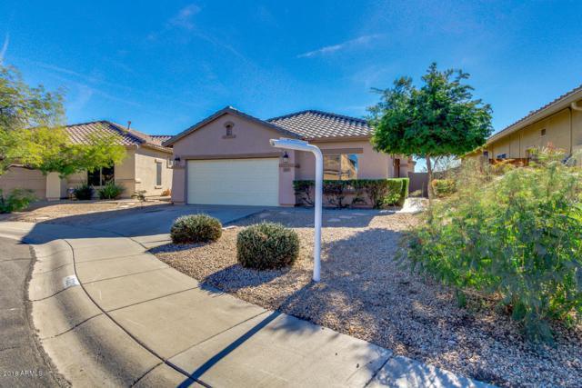 3209 W Walden Court, Anthem, AZ 85086 (MLS #5857838) :: The Daniel Montez Real Estate Group