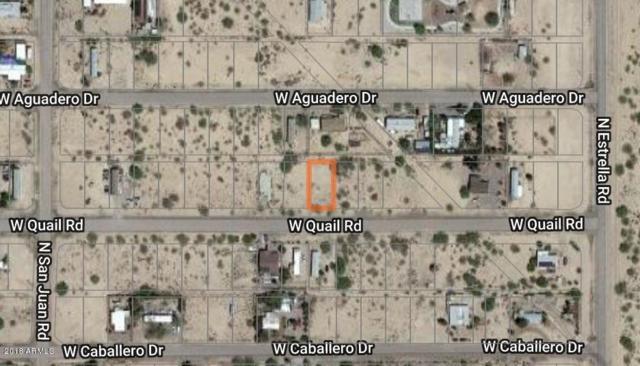 3120 W Quail Drive, Eloy, AZ 85131 (MLS #5857844) :: Keller Williams Legacy One Realty