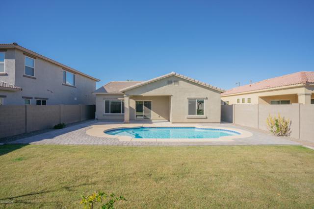 16551 N 180TH Drive, Surprise, AZ 85388 (MLS #5857879) :: Lifestyle Partners Team