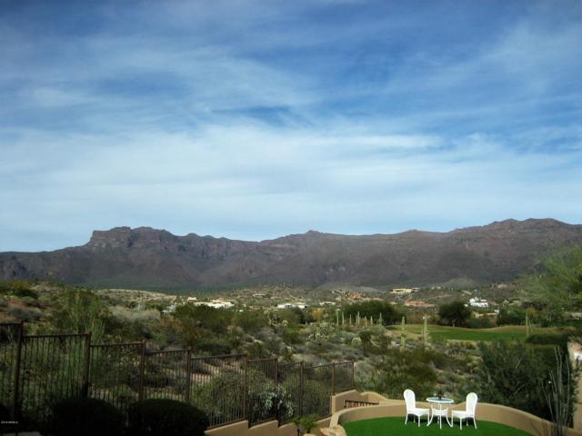 9663 E Little Further Way, Gold Canyon, AZ 85118 (MLS #5857890) :: Arizona 1 Real Estate Team