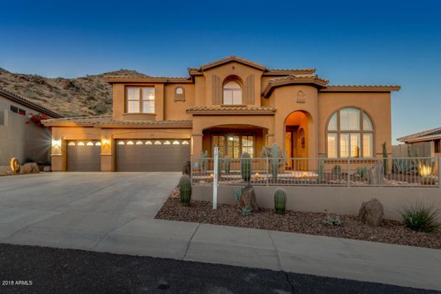 2910 W Amberwood Drive, Phoenix, AZ 85045 (MLS #5857893) :: CANAM Realty Group