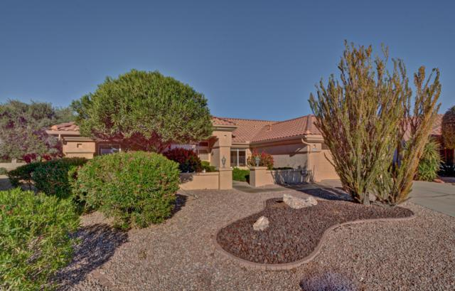 14410 W Via Tercero, Sun City West, AZ 85375 (MLS #5857904) :: Desert Home Premier