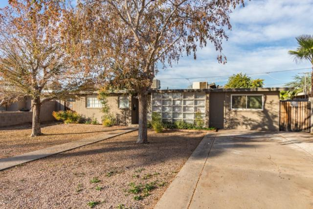 680 N Delaware Street, Chandler, AZ 85225 (MLS #5857968) :: Devor Real Estate Associates