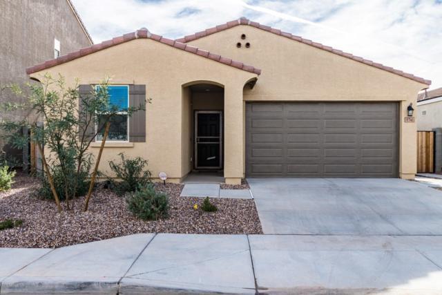 9741 W Southgate Avenue, Tolleson, AZ 85353 (MLS #5857977) :: The Luna Team