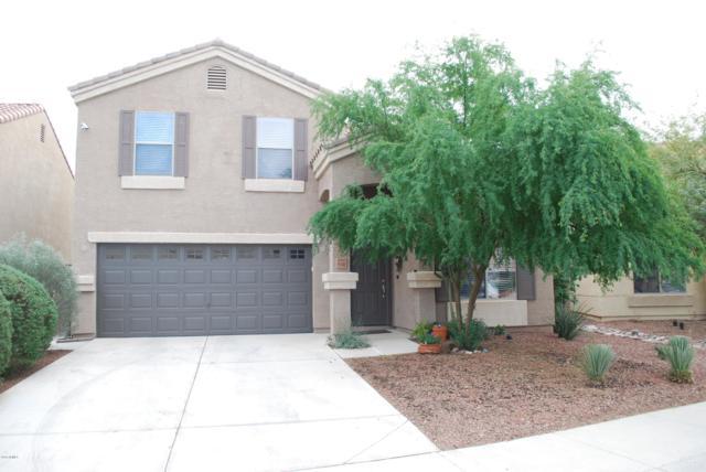 11145 W Elm Street, Phoenix, AZ 85037 (MLS #5857978) :: Abrams International and Homehelper Consultants