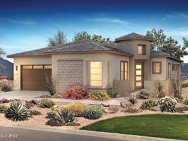 29329 N Tarragona Drive, Peoria, AZ 85383 (MLS #5857983) :: Desert Home Premier