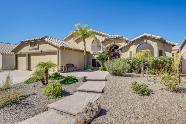14648 S 24TH Street, Phoenix, AZ 85048 (MLS #5858005) :: Abrams International and Homehelper Consultants