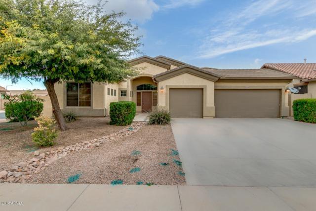 45290 W Juniper Avenue, Maricopa, AZ 85139 (MLS #5858008) :: The Pete Dijkstra Team