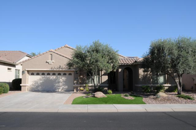 2161 N 164TH Avenue N, Goodyear, AZ 85395 (MLS #5858026) :: The Luna Team