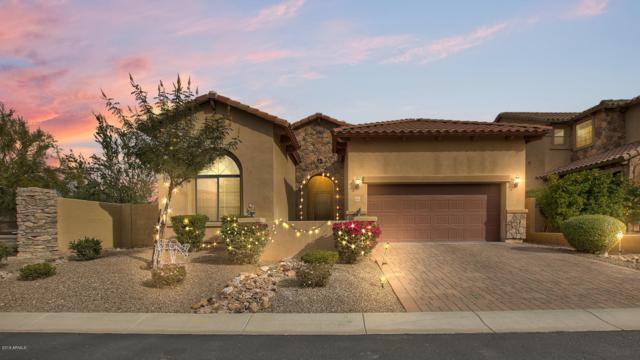 8360 E Ingram Circle, Mesa, AZ 85207 (MLS #5858028) :: Kelly Cook Real Estate Group