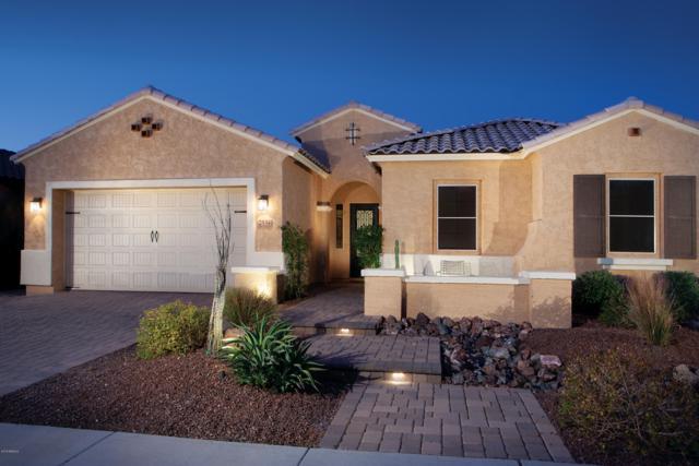 2534 W Balao Drive, Phoenix, AZ 85085 (MLS #5858033) :: Kelly Cook Real Estate Group