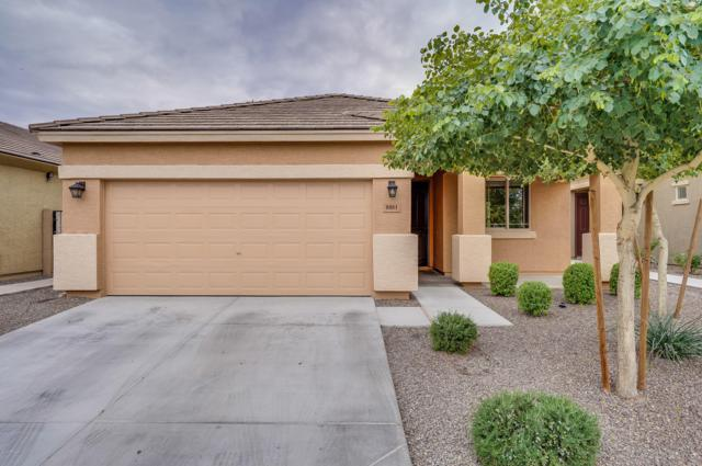 8881 W Hollywood Avenue, Peoria, AZ 85345 (MLS #5858035) :: Team Wilson Real Estate