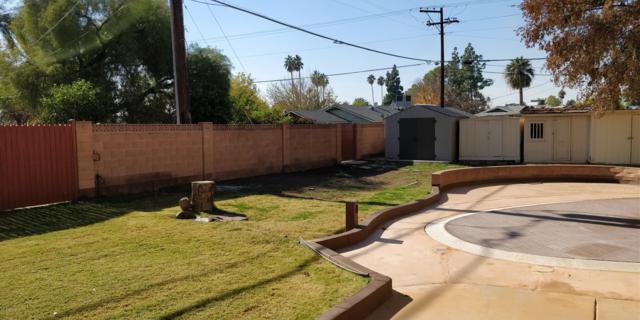 225 W Orchid Lane, Phoenix, AZ 85021 (MLS #5858047) :: CANAM Realty Group