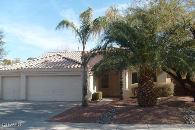 419 S Pueblo Street, Gilbert, AZ 85233 (MLS #5858049) :: The Pete Dijkstra Team
