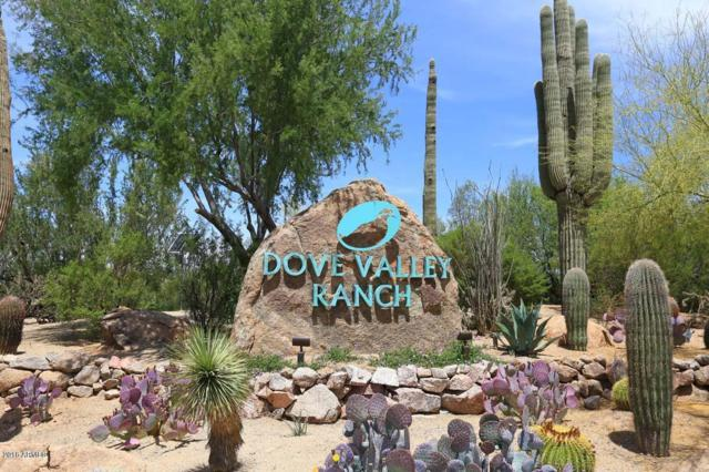 4525 E Brilliant Sky Drive, Cave Creek, AZ 85331 (MLS #5858085) :: Occasio Realty