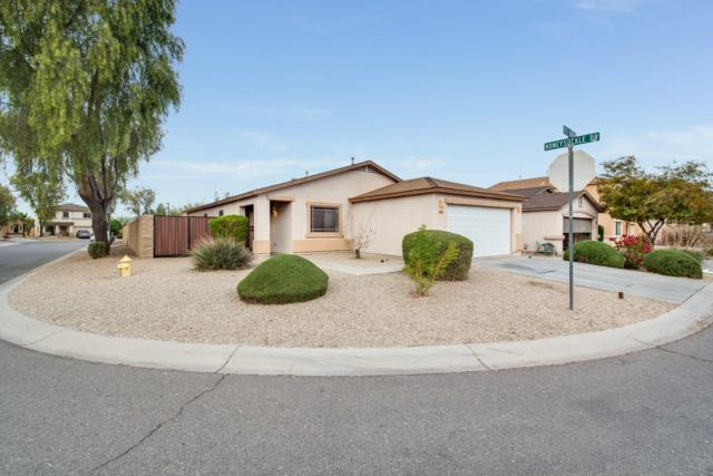 1626 E Dust Devil Drive, San Tan Valley, AZ 85143 (MLS #5858105) :: Keller Williams Legacy One Realty